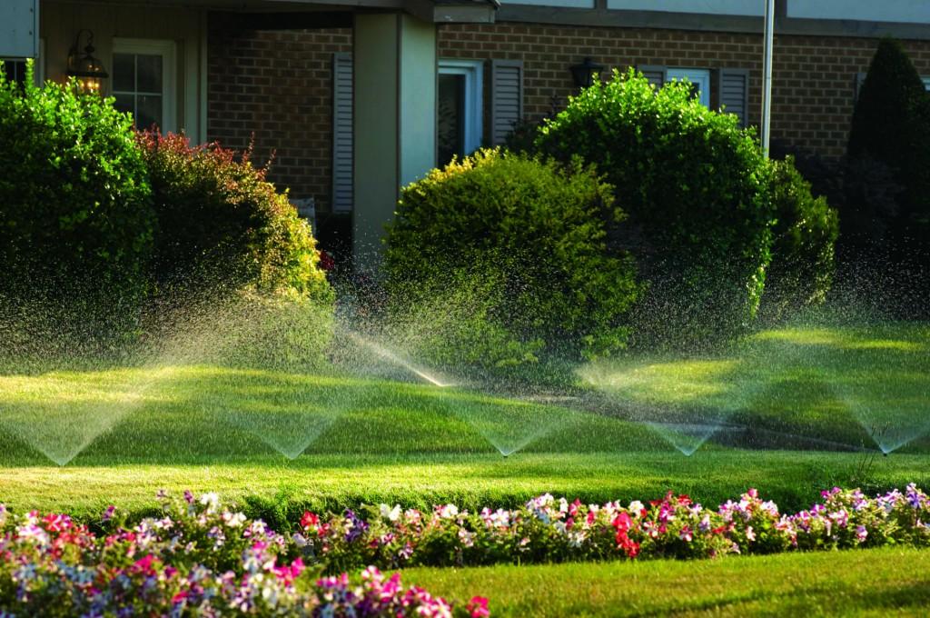 sprinkler-installation-contactor-eugene